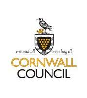 Council CEO steps down