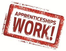 Apprenticeships Work! Small