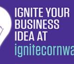 Ignite – Business Cornwall web banner copy