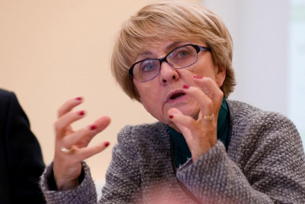 Professor Danuta Hübner