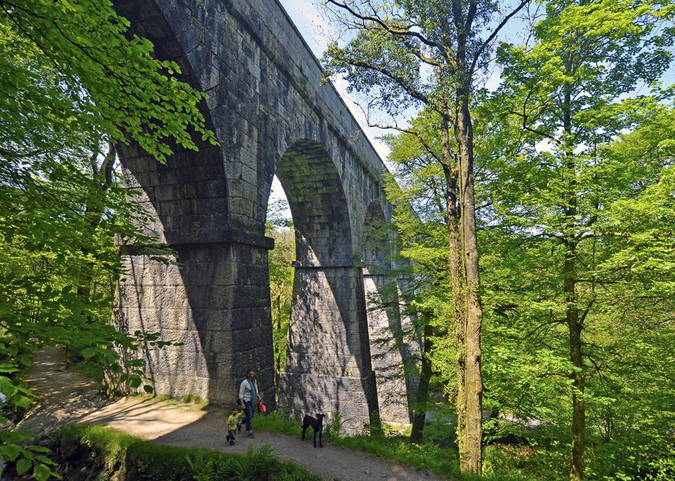 8d LV Treffry Viaduct & Fowey Consols Leat Path