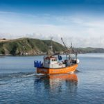 Ocean Fish secures new contract with Aldi
