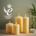 St. Eval win Queen's Award – social image72